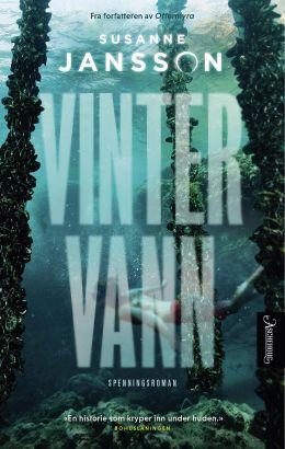 Vintervann